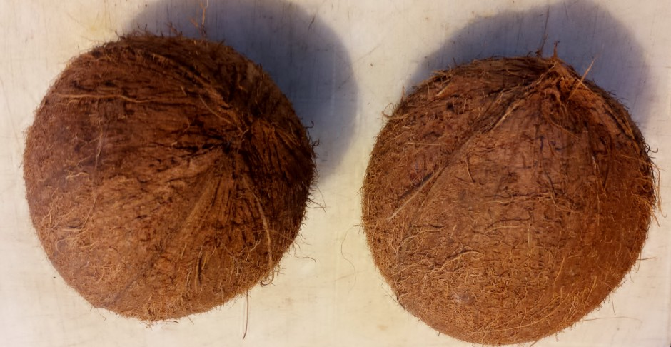 L'huile de coco, une alliée santé et beauté (code promo)