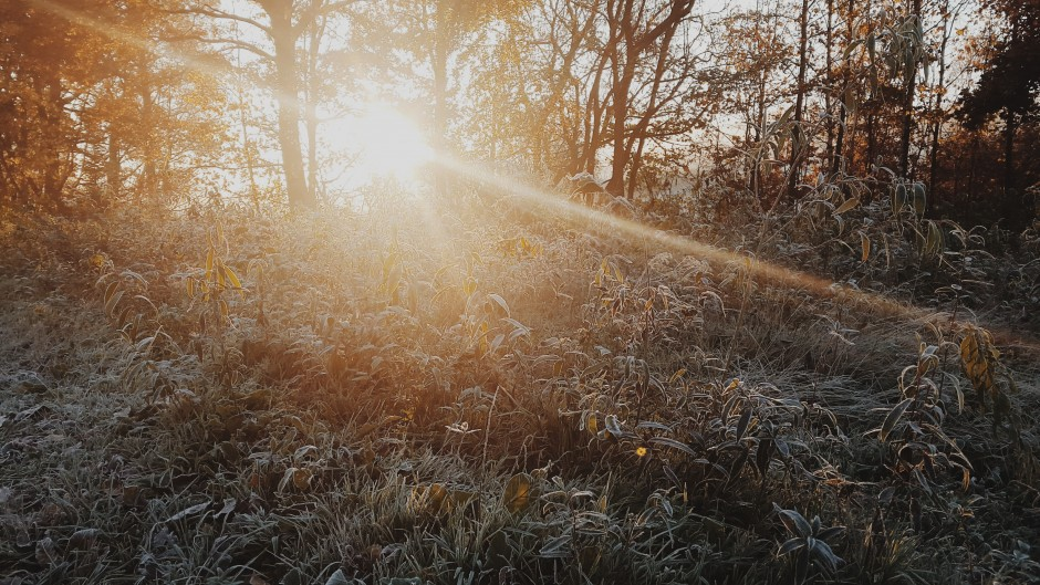 guérir les petits maux de l'hiver
