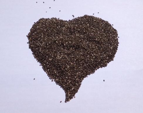 Les bienfaits des graines de chia ou 10 effets santé des graines de chia